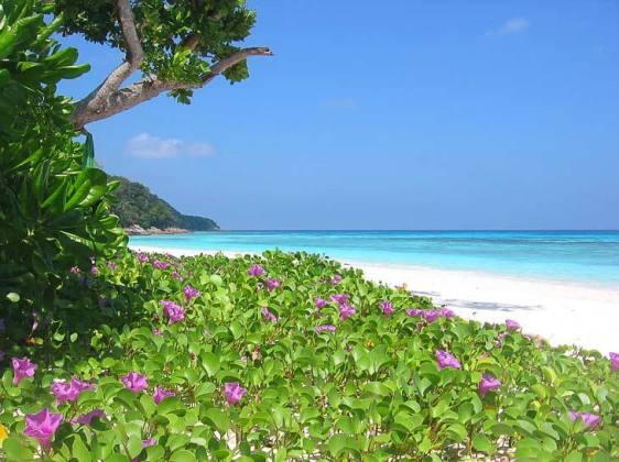 Koh_Tachai_Island_Beach-Andaman_Sea-Thailand